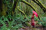 Woman with umbrella walking in forest Stock Photo - Premium Royalty-Free, Artist: Russell Monk, Code: 614-06719897