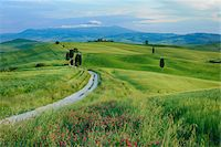Path passing through green fields treelined with cypress trees and Mount Amiata in background. Pienza, Siena Province, Val d´Orcia, Tuscany, Italy, Mediterranean Area. Stock Photo - Premium Royalty-Freenull, Code: 600-06732542