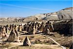 Turkey, Central Anatolia, Cappadocia, Tuff rock formations (Fairy Chimneys), Pasabag, near Zelve Stock Photo - Premium Rights-Managed, Artist: Siephoto, Code: 700-06732660