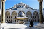 Turkey, Marmara, Istanbul, Fatih Mosque Courtyard Stock Photo - Premium Rights-Managed, Artist: Siephoto, Code: 700-06732685