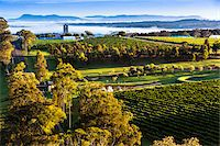 road landscape - Overview of wine country near Pokolbin, Hunter Valley, New South Wales, Australia Stock Photo - Premium Rights-Managednull, Code: 700-06732747