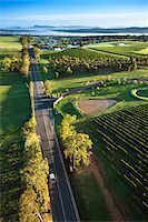 road landscape - Aerial view of wine country near Pokolbin, Hunter Valley, New South Wales, Australia Stock Photo - Premium Rights-Managednull, Code: 700-06732748