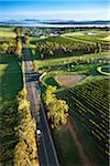 Aerial view of wine country near Pokolbin, Hunter Valley, New South Wales, Australia Stock Photo - Premium Rights-Managed, Artist: R. Ian Lloyd, Code: 700-06732748
