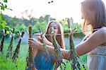 Young Women Drying Lavender In The Garden, Croatia, Dalmatia, Europe Stock Photo - Premium Royalty-Freenull, Code: 6115-06733028