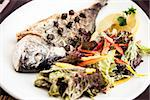 Grilled gilt-head bream fish in herbs and lemon
