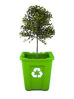 Paper recycling concept with Italian Maple tree growing from green recycle bin Stock Photo - Royalty-Freenull, Code: 400-06735714