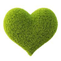 Green grass heart. Isolated on white. Stock Photo - Royalty-Freenull, Code: 400-06736957