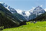 Summer Stelvio Pass with snow on mountainside and blossoming meadow(Italy) Stock Photo - Royalty-Free, Artist: Yuriy                         , Code: 400-06737444