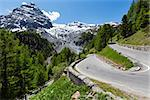 Summer Stelvio Pass with fir forest and  snow on mountain top (Italy) Stock Photo - Royalty-Free, Artist: Yuriy                         , Code: 400-06737446