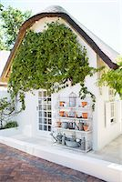 quaint house - Ivy growing on wall in backyard Stock Photo - Premium Royalty-Freenull, Code: 6113-06753923