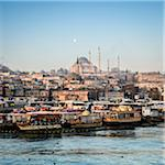 Turkey, Marmara, Istanbul, Suleymaniye Mosque, the largest mosque in the city, view by the Golden Horn