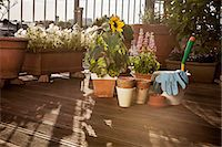 Flower Pots And Garden Tools On Balcony, Munich, Bavaria, Germany, Europe Stock Photo - Premium Royalty-Freenull, Code: 6115-06778675