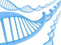 DNA molecules, computer artwork. Stock Photo - Premium Royalty-Freenull, Code: 679-06781036
