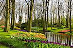 Flowers at Keukenhof Gardens, Lisse, Netherlands, Europe