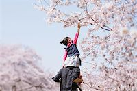 Father and daughter between cherry trees Stock Photo - Premium Rights-Managednull, Code: 859-06808432