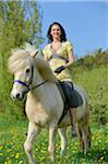 Young woman riding an icelandic horse on a meadow in spring, Germany Stock Photo - Premium Rights-Managed, Artist: David & Micha Sheldon, Code:
