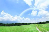 road landscape - Grassland and sky with clouds Stock Photo - Premium Royalty-Freenull, Code: 622-06809744