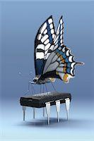Butterfly standing on a six-legged computer chip Stock Photo - Premium Royalty-Freenull, Code: 618-06818531