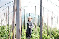 farmhand (female) - Young woman working in vegetable greenhouse Stock Photo - Premium Royalty-Freenull, Code: 649-06844247