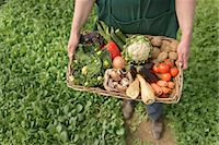 Farmer carrying organic vegetables in box for delivery, close up Stock Photo - Premium Royalty-Freenull, Code: 649-06845113
