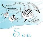 Marine background with different graphics fish