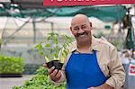 Mature man holding pot plant in garden centre, smiling Stock Photo - Premium Royalty-Free, Artist: Blend Images, Code: 614-06896207
