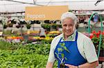 Senior man holding plant in garden centre, portrait Stock Photo - Premium Royalty-Freenull, Code: 614-06896211