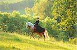 Woman Wearing Dress Riding a Connemara Stallion on a Meadow, Germany Stock Photo - Premium Rights-Managed, Artist: David & Micha Sheldon, Code: 700-06900025
