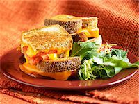 Grilled Cheese and Tomato Sandwich;Quartered and Stacked; Side Salad Stock Photo - Premium Royalty-Freenull, Code: 659-06901391