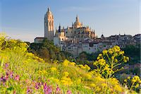 Spain, Segovia, Segovia Cathedral, field in foreground Stock Photo - Premium Royalty-Freenull, Code: 6106-06980527
