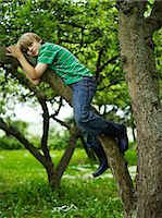 Young boy (8-9) laying on tree branch Stock Photo - Premium Royalty-Freenull, Code: 6106-06982735