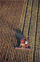 Aerial view of harvester in field Stock Photo - Premium Royalty-Freenull, Code: 6106-07006782