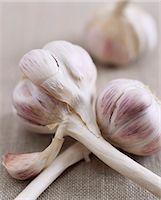 Garlic Stock Photo - Premium Royalty-Freenull, Code: 6106-07010711