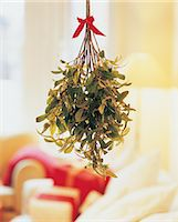 Mistletoe Hanging in Room Stock Photo - Premium Royalty-Freenull, Code: 6106-07020077
