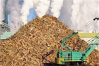 Pile of logs at papermill Stock Photo - Premium Royalty-Freenull, Code: 6106-07021258