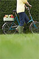 riding crop - Unrecognizable person walking bicycle with basket of apples along hedge, low section Stock Photo - Premium Royalty-Freenull, Code: 6106-07022088