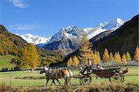 Carriage in the Rieserferner-Ahrn Nature Park, South Tyrol, Italy Stock Photo - Premium Rights-Managednull, Code: 853-07026691