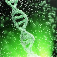 Flow of atoms forming a DNA chain Stock Photo - Premium Royalty-Freenull, Code: 6106-07029713