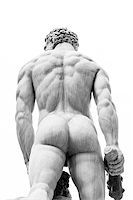 Real Man Back in Piazza della Signoria, Florence, Italy Stock Photo - Royalty-Freenull, Code: 400-07044832