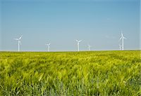 Group of wind turbines, Selfkant, Germany Stock Photo - Premium Royalty-Freenull, Code: 649-07063471