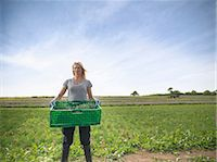 farmhand (female) - Woman carrying crate of chives Stock Photo - Premium Royalty-Freenull, Code: 649-07064616