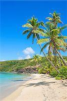 paradise (place of bliss) - Tropical beach, Yasawa Island Group, Fiji, South Pacific islands Stock Photo - Premium Royalty-Freenull, Code: 649-07064657