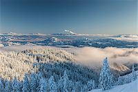 scenic view - View of Mount Shasta form Mount Ashland, Southern Orgon, USA Stock Photo - Premium Rights-Managednull, Code: 700-07067222