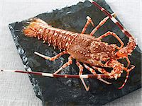 Breton spiny lobster Stock Photo - Premium Rights-Managed, Artist: Photocuisine, Code: 825-07077947
