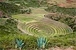 Moray Incan agricultural laboratory ruins near Maras, Sacred Valley, Peru, South America Stock Photo - Premium Rights-Managed, Artist: Robert Harding Images, Code: 841-07082871