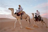 Dromedary riders in the Sahara, Douz, Kebili, Tunisia, North Africa, Africa Stock Photo - Premium Rights-Managednull, Code: 841-07083355