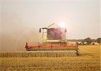 Combine harvester in field, Devon, England, UK Stock Photo - Premium Royalty-Freenull, Code: 649-07119686