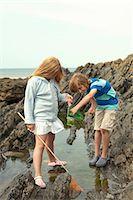 Teenage boy and girl rock pooling Stock Photo - Premium Royalty-Freenull, Code: 649-07119904