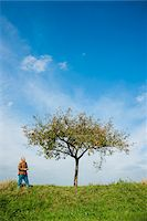 single fruits tree - Farmer standing in field, inspecting apple tree, Germany Stock Photo - Premium Royalty-Freenull, Code: 600-07148340
