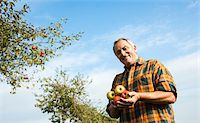 single fruits tree - Portrait of farmer holding apples in orchard, Germany Stock Photo - Premium Royalty-Freenull, Code: 600-07148345